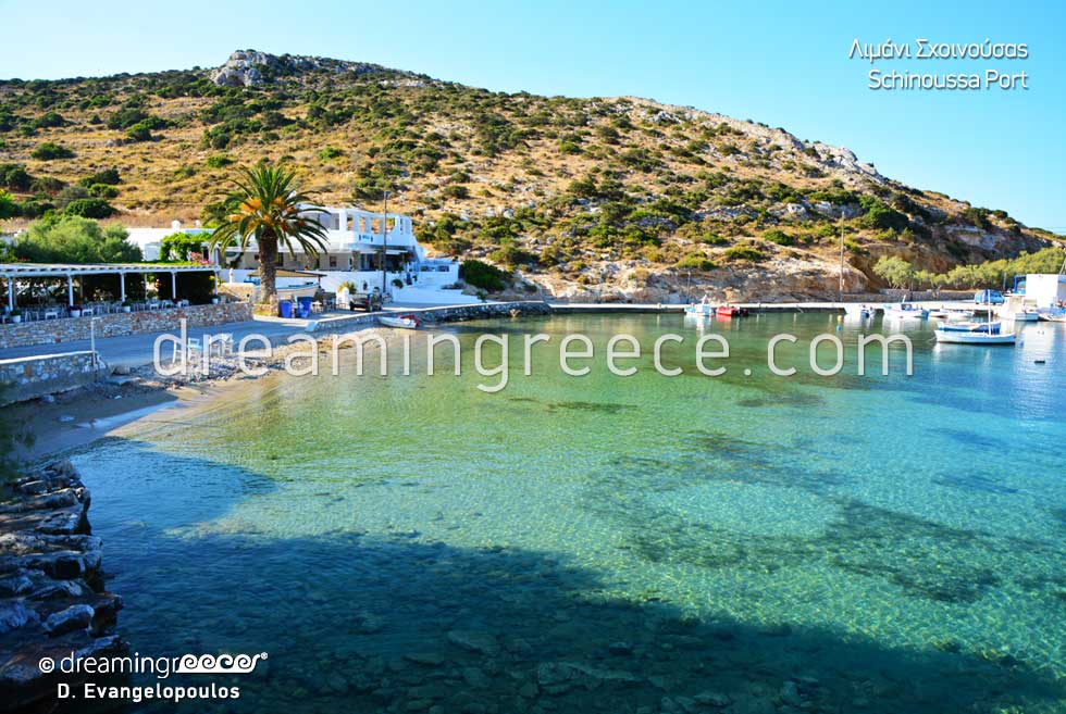 Travel Guide of Schinoussa Greece Port