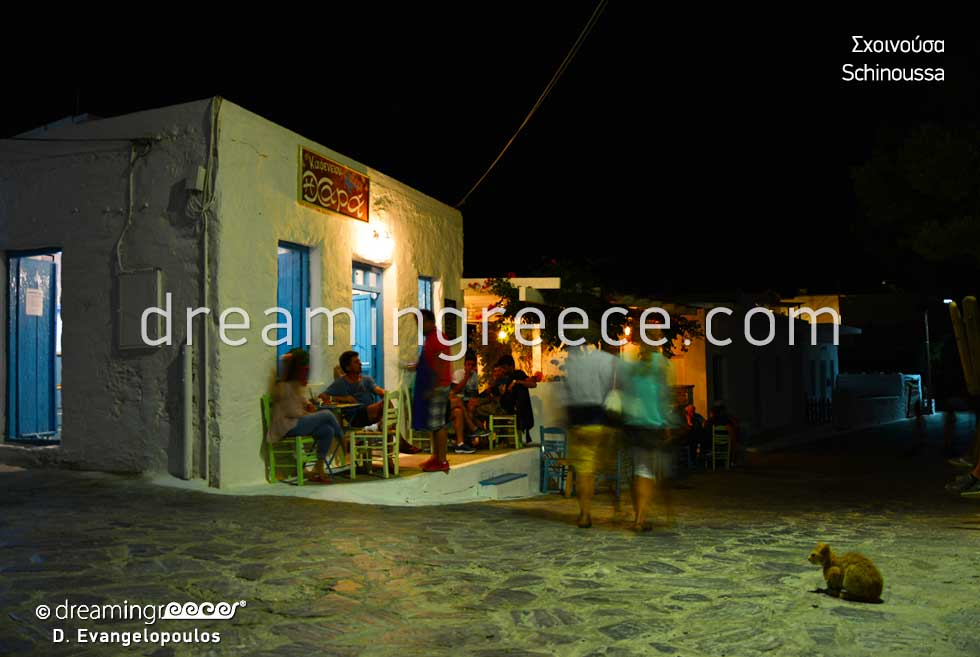 Vacatiosn in Schinoussa island Small Cyclades Greece
