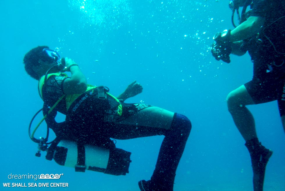 We Shall Sea Dive Center Amorgos. Diving Centers Greece