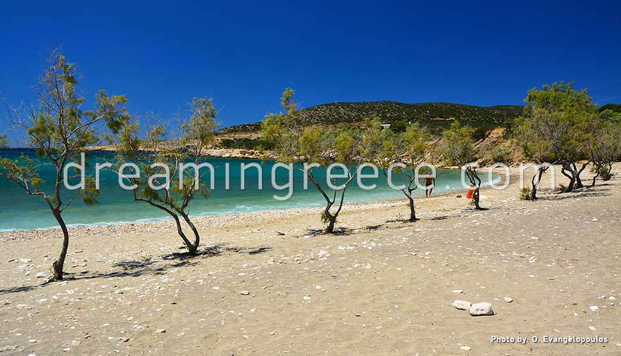 Glyfa beach Paros beaches Greece. Holidays in Paros island.